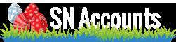 SN Accounts – Zdrowe Finanse w Twojej firmie Logo
